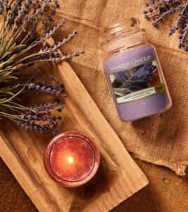 Yankee Candle Herbst 2019 Dried Lavender & Oak