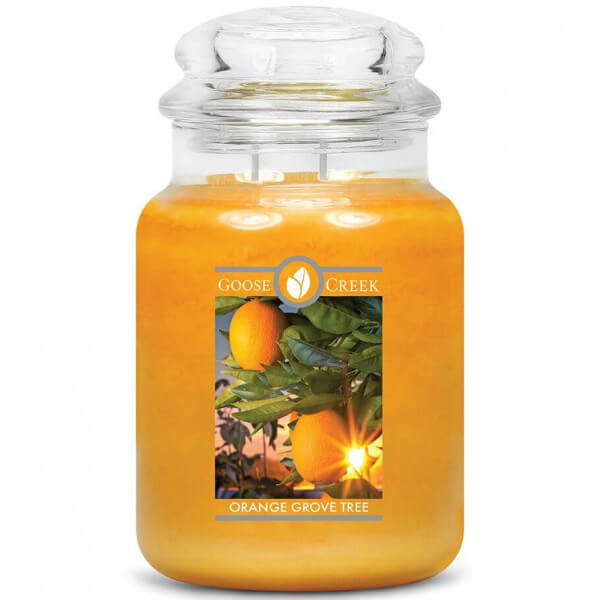 Goose Creek Orange Grove Tree 680g Jar