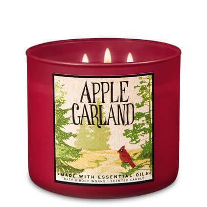 Apple Garland 411g