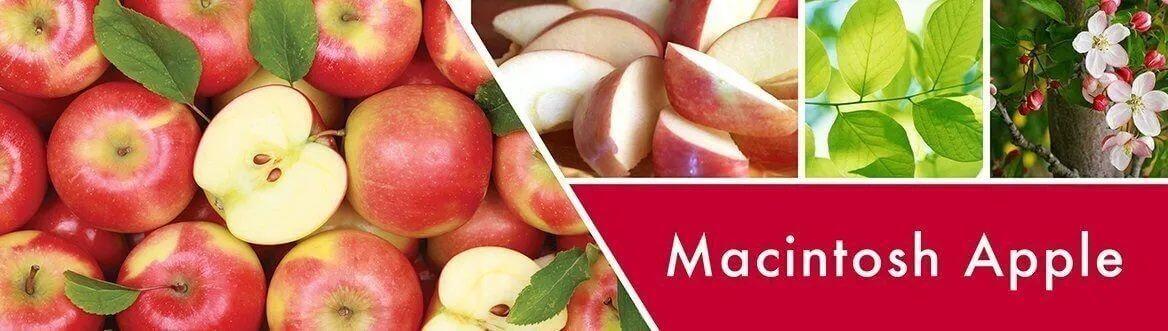 goose-creek-candle-macintosh-apple-duftbeschreibung