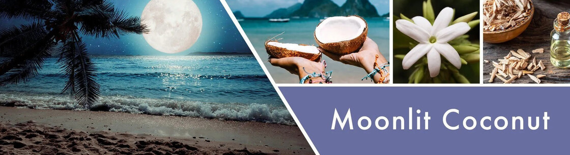 goose-creek-candlez-moonlit-coconut-fluessige-schaum-handseife-270ml-2