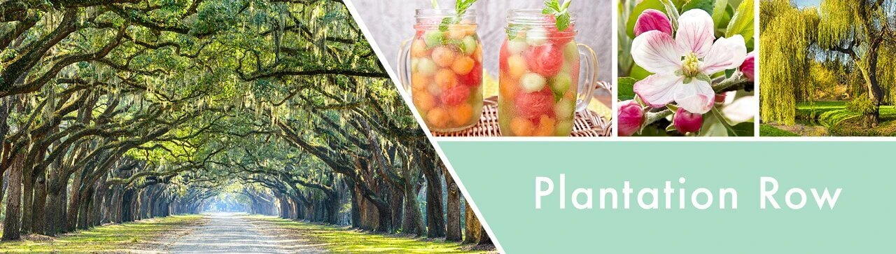 Plantation-Row-Fragrance-Banner