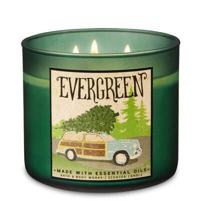 Evergreen 411g