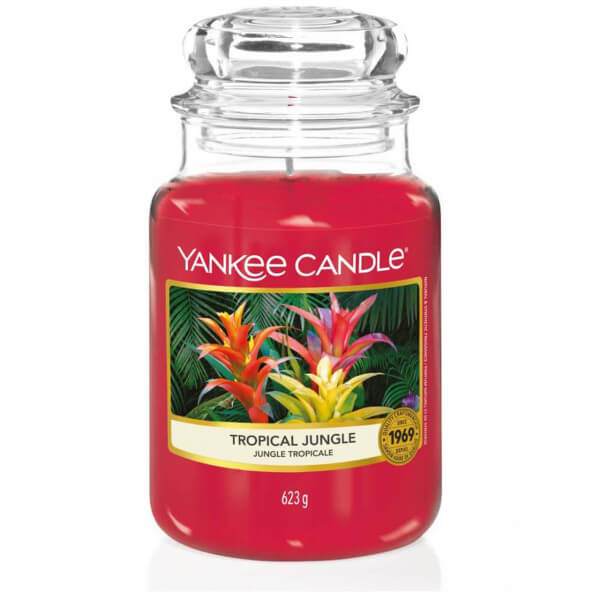 Tropical Jungle 623g