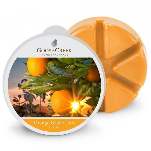 Goose Creek Orange Grove Tree 59g Melt