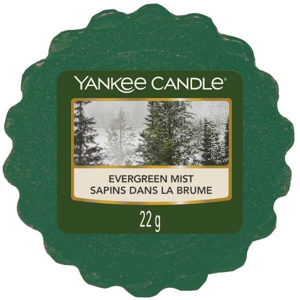 Evergreen Mist 22g von Yankee Candle