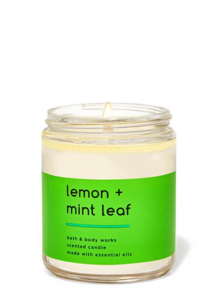 1-Docht Kerze - Lemon Mint Leaf- 198g