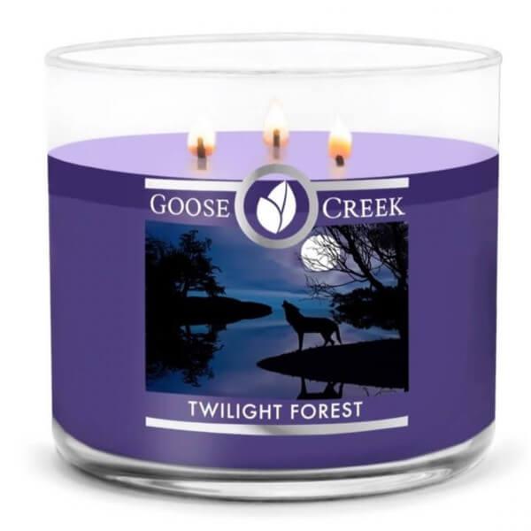 Twilight Forest 411g (3-Docht)