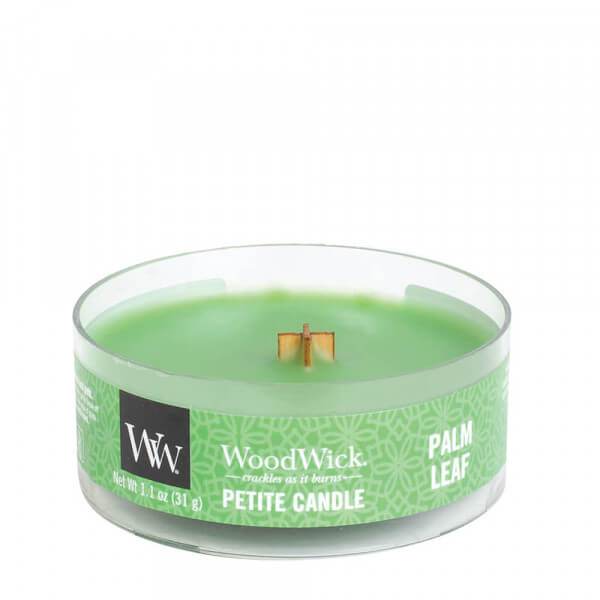 Palm Leaf Petite Candle 31g von Woodwick