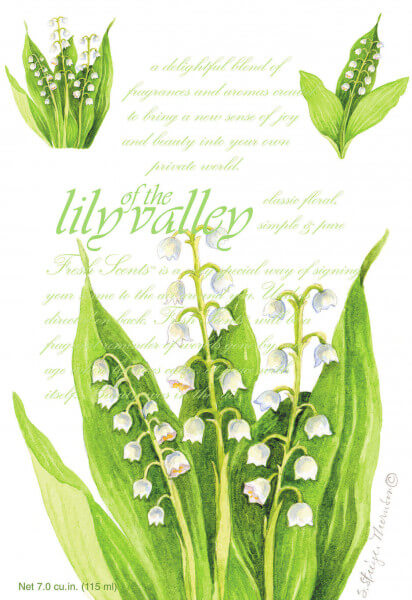Lily Of The Valley Duftsachet Large 115ml
