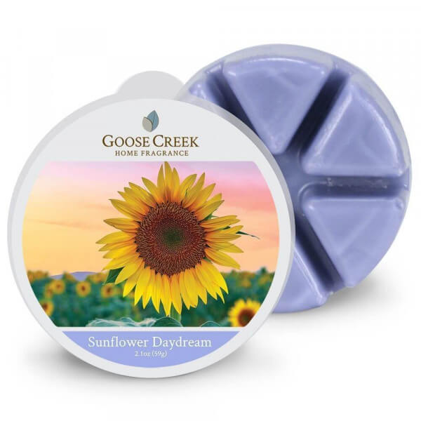Sunflower Daydream 59g von Goose Creek Candle