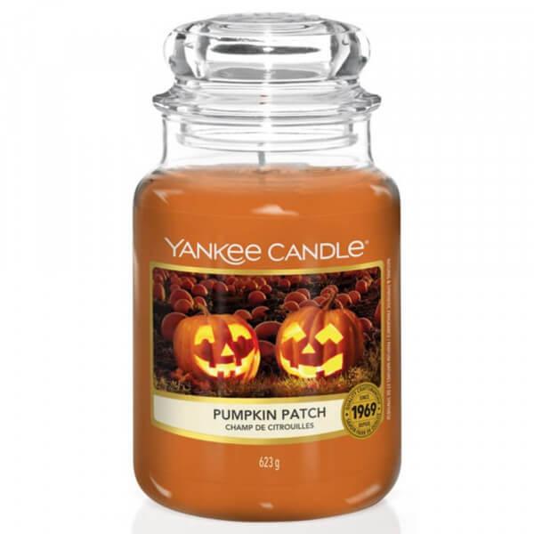 Pumpkin Patch 623g von Yankee Candle