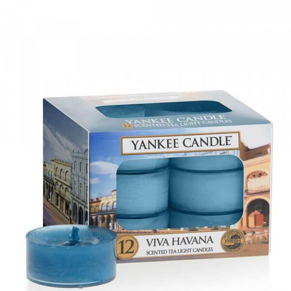 Yankee Candle Viva H. 12St Teelichte