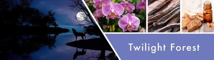 Twilight-Forest