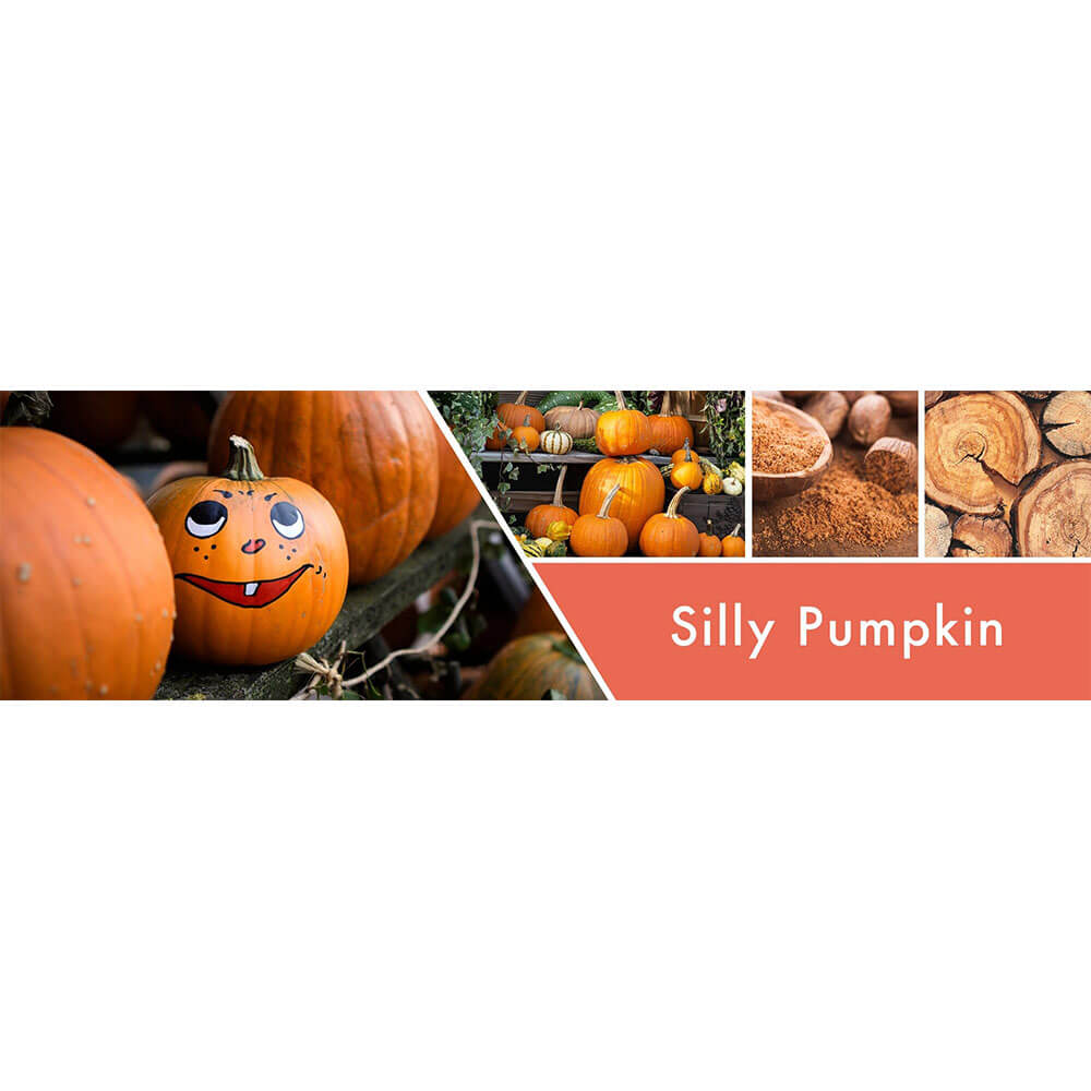 12+ Silly Pumpkin 8g Bilder