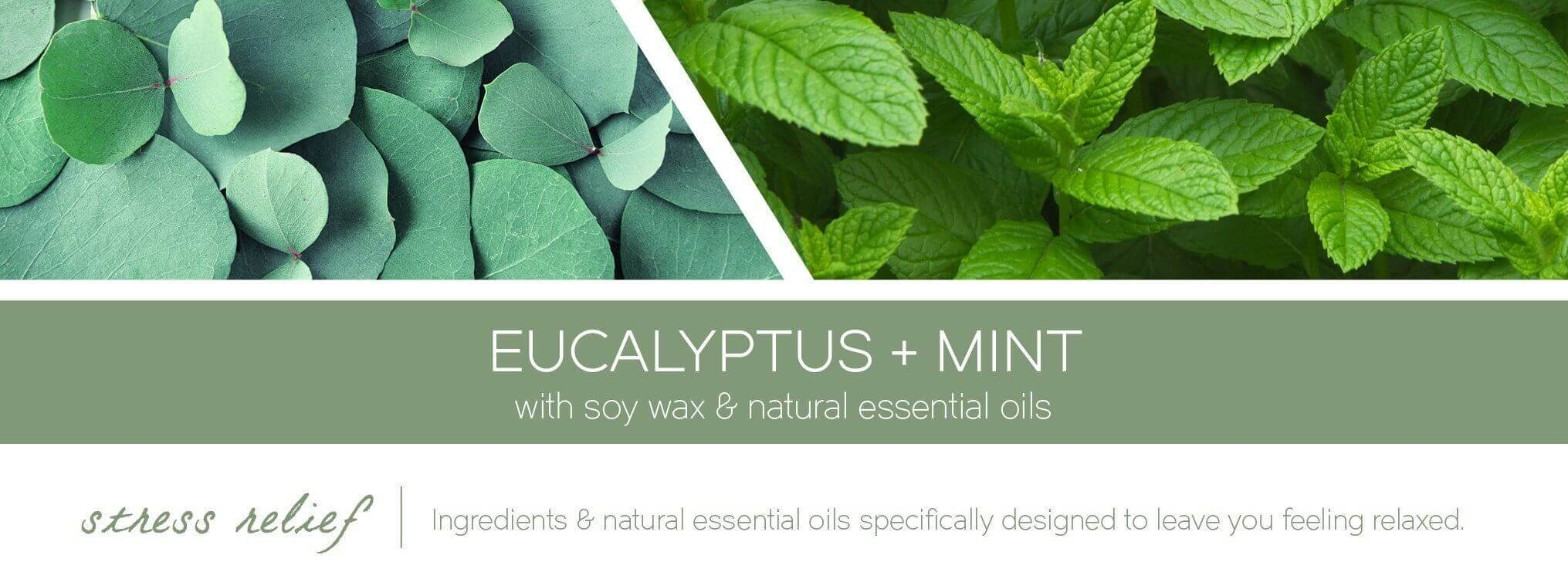 eucalyptus-mint-aromatherapy-candle-fragrance