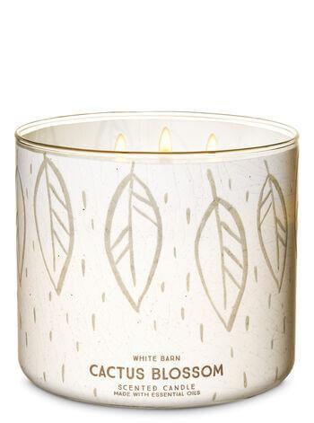 3-Docht Kerze - Cactus Blossom - 411g