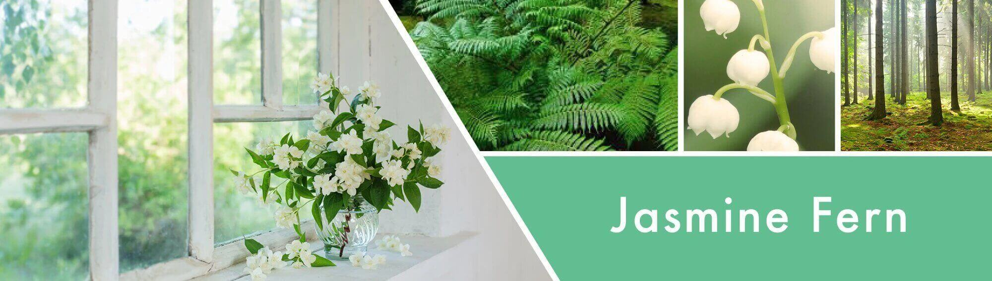Jasmine-Fern-Candle-Fragrance_7b5f80ef-d43f-4aba-b9bc-e93653040c0d