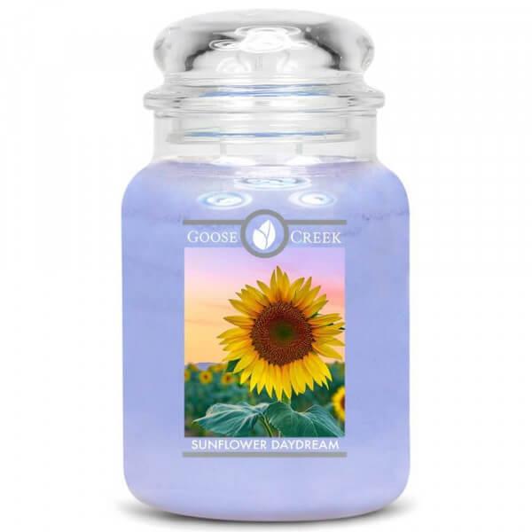 Sunflower Daydream 680g von Goose Creek Candle