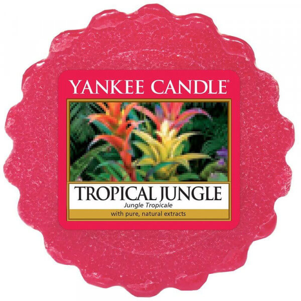 Tropical Jungle 22g - Yankee Candle