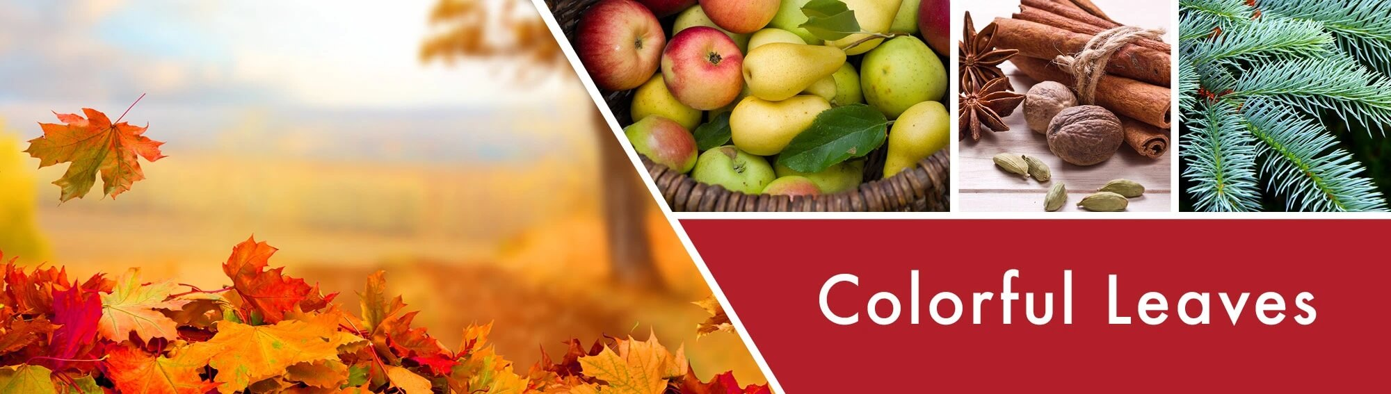 Colorful-Leaves-Banner