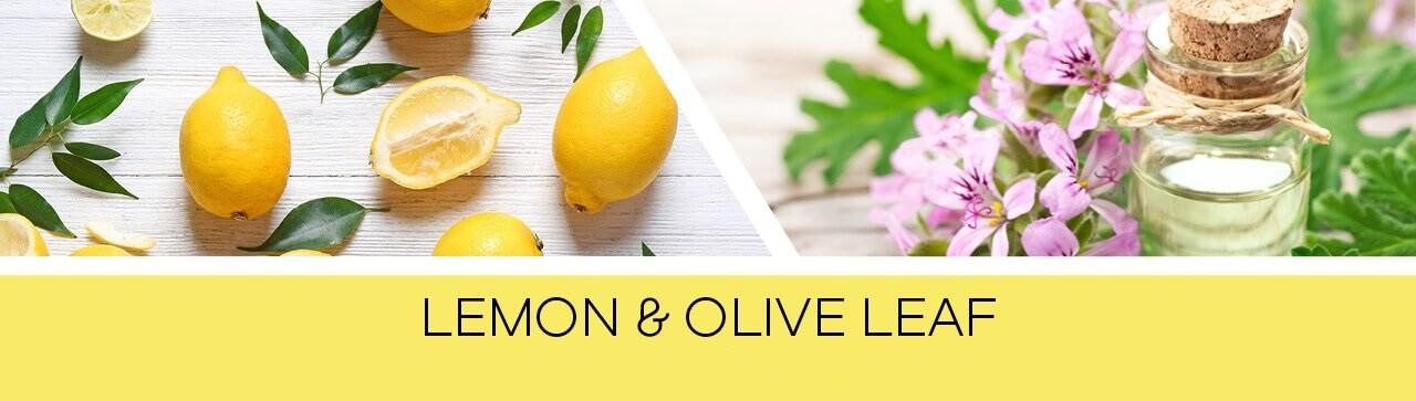 Lemon-_-Olive-Leaf-2tOWvxdTwYBEsy