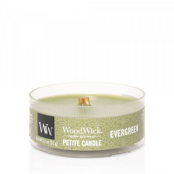 Evergreen Petite Candle 31g von Woodwick